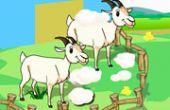 Ranch Propre Debout